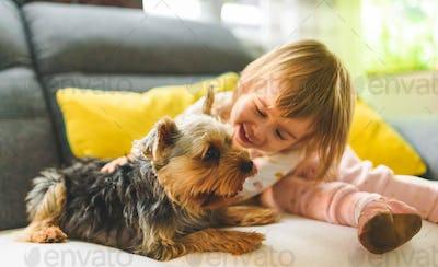 Child with a york dog ona a sofa