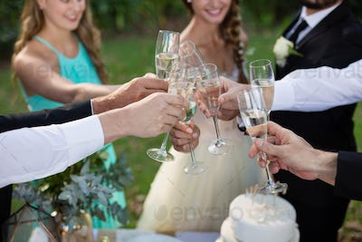 Newly married couple and guests toasting glasses of champagne