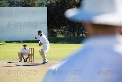 Rear view of umpire standing at cricket match field