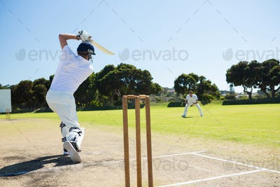 Rear view of player batting while playing cricket on field