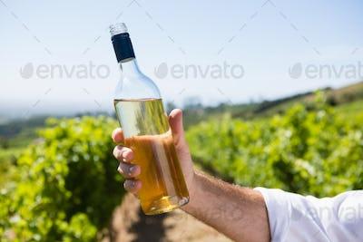 Vintner holding wine bottle