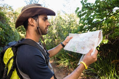 Man reading the map in the forest