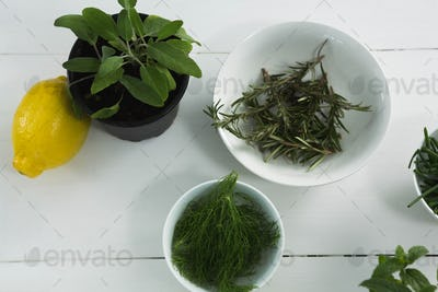 Various herbs in bowl with sweet lime