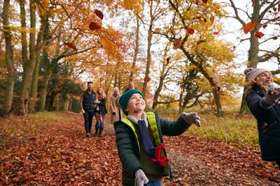 Children Throwing Leaves As Multi-Generation Family Walk Along Autumn Woodland Path