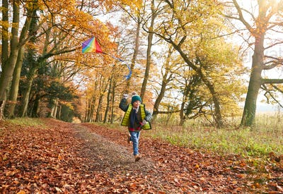 Young Boy Having Fun Running Along Path Through Autumn Woodland Flying Kite