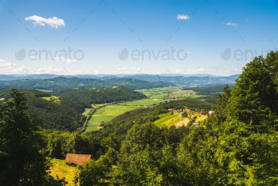 Vineyard on Austrian countryside. Landscape of styrian nature.