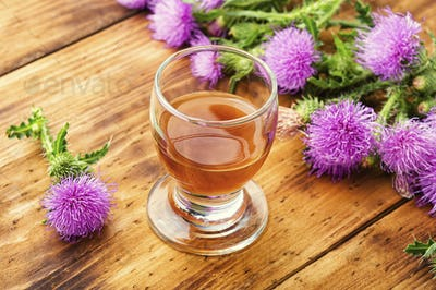 Thistle in herbal medicine.