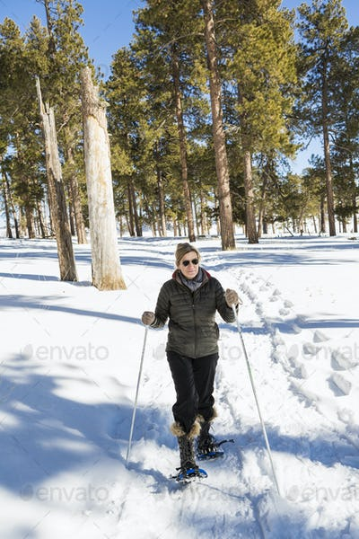 An adult woman in snow shoes in woodland holding ski poles