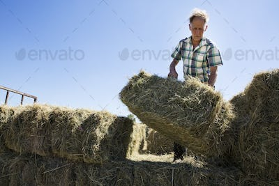 Farmer stacking hay bales on a trailer.