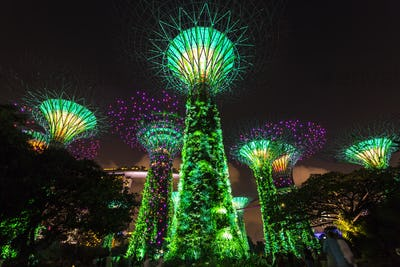 Low angle view of illuminated Supertree Grove at Gardens by the Bay, Singapore at night.