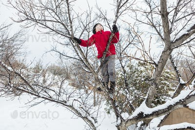 Six year old boy in a red jacket climbing a tree in winter