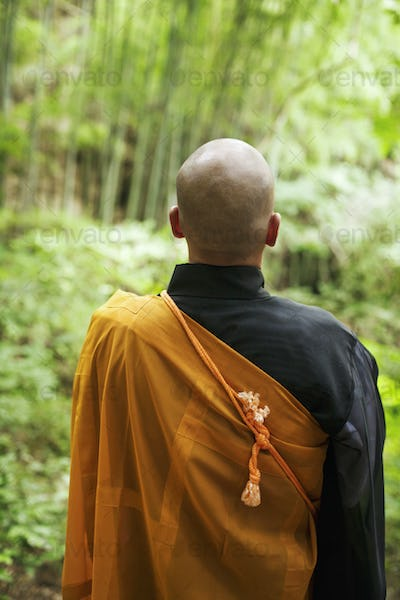 Rear view of Buddhist monk with shaved head wearing black and yellow robe, standing outdoors.
