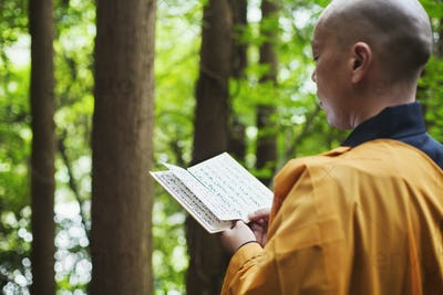 Side view of Buddhist monk in robes standing outdoors, holding prayer text.