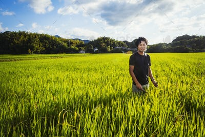 A rice farmer standing in a field of green crops, a rice paddy with lush green shoots.