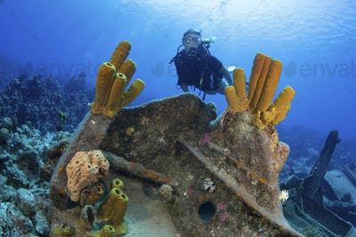 Yellow tube sponges adorn a section of the Oro Verde shipwreck, Grand Cayman