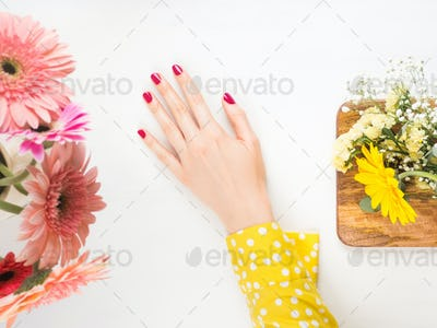 Beautiful female hand with red nails on white