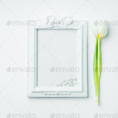 White blank frame and tulip for greetings