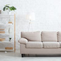 Minimalist style. Modern living room with sofa, plants and window
