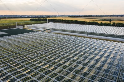 Indoor farming. Aerial top view of glass greenhouse plant