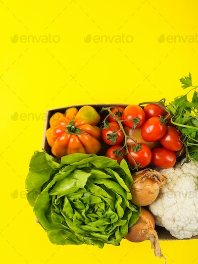 Food, produce delivery or donation box concept