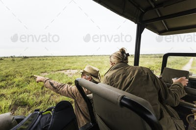 Adult woman and a safari guide leaning out looking across a plain to animals in the distance.
