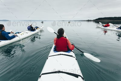 A group of friends sea kayak in pristine waters of Muir Inlet in Glacier Bay National Park, Alaska