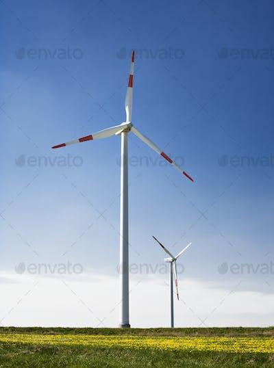 48988,Wind Turbines in Field