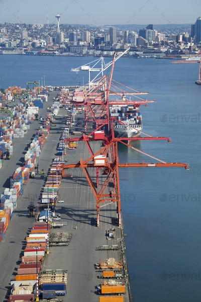 45624,Cranes at the Port of Seattle