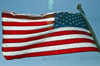 45462,American Flag in the Wind