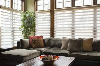 55263,Sofa and blinds in living room
