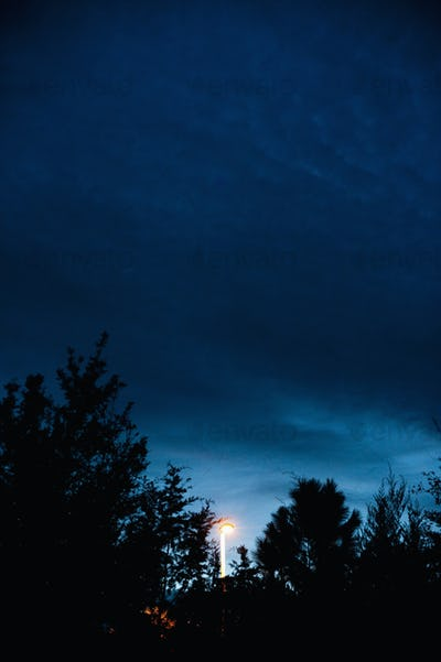 45581,Streetlamp at Dusk
