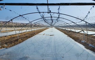 45045,Uncovered Greenhouse