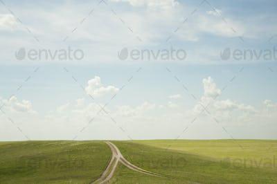 55217,Forked dirt road in remote landscape