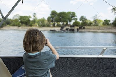 Rear view of 5 year old boy taking pictures of elephants at waters edge on the Zambezi River
