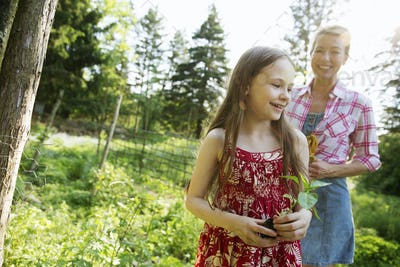 A young girl holding a seedling plant, walking through a garden