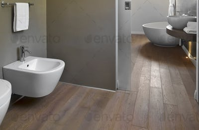 Modern Bathroom Interior with Wooden Floor