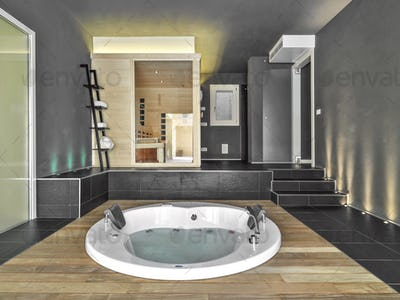 Modern Bathroom Interior with Bathtub and Sauna