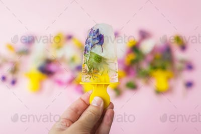Hello summer concept.Hand holding floral Ice Pop with summer wildflowers