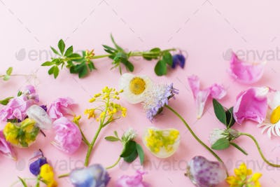 Hello summer concept. Floral ice cubes and fresh summer flowers
