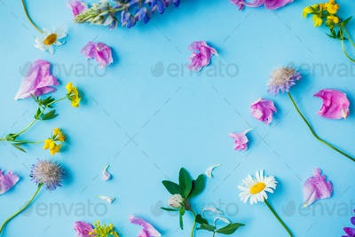 Summer wildflowers and petals on blue background flat lay with copy space
