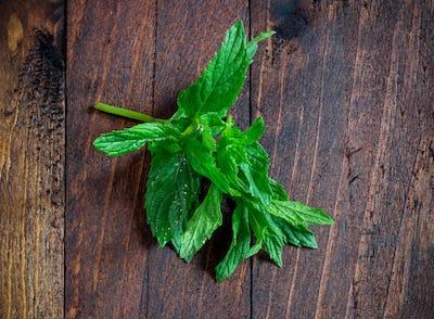 Mint leaves on wood