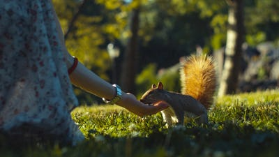 Young girl feeding a squirrel, close-up