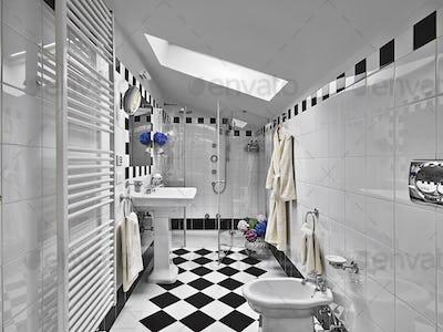 Modern Bathroom Interior in the Attic