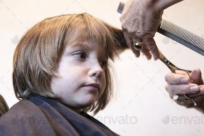 4 year old boy getting a haircut