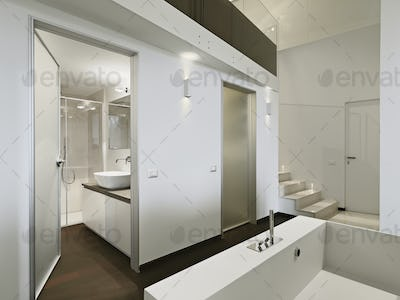 Modern Bathroom Interior in the Foreground the Bathtub on the Background the Washbasin