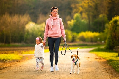 Mother and child and beagle walking on countryside road between agricultural fields towards vilage