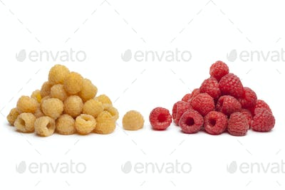 Yellow and red raspberries