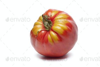 Single Coeur de Boeuf tomato