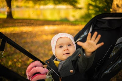 One year old cute baby girl in black strolly amazed to see colorful autumn leaves. Reaching hand out