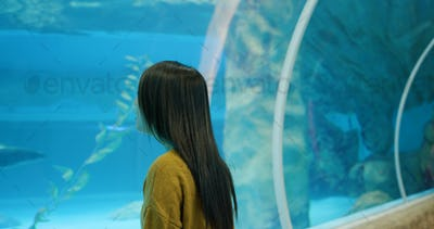 Woman in the aquarium, and look at the fish inside